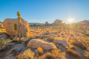 running-in-the-desert-with-adrenal-insuffiency