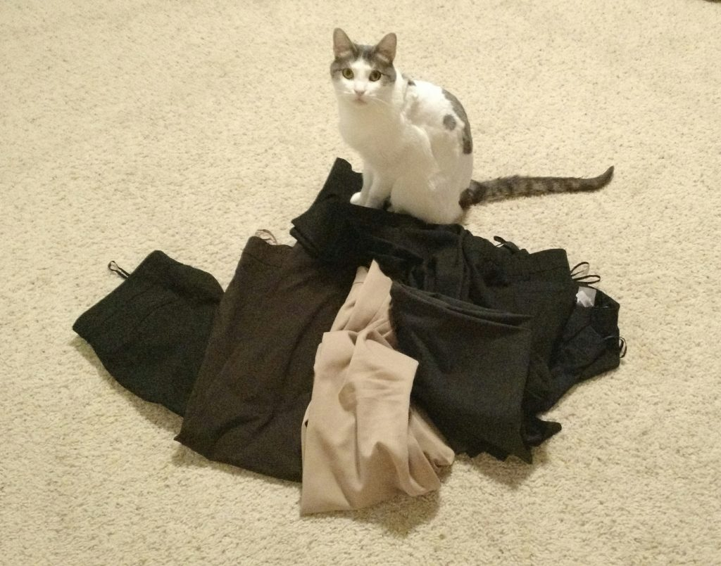 My cat standing on six pairs of pants that no longer fit me due to weight gain due to adrenal insufficiency.