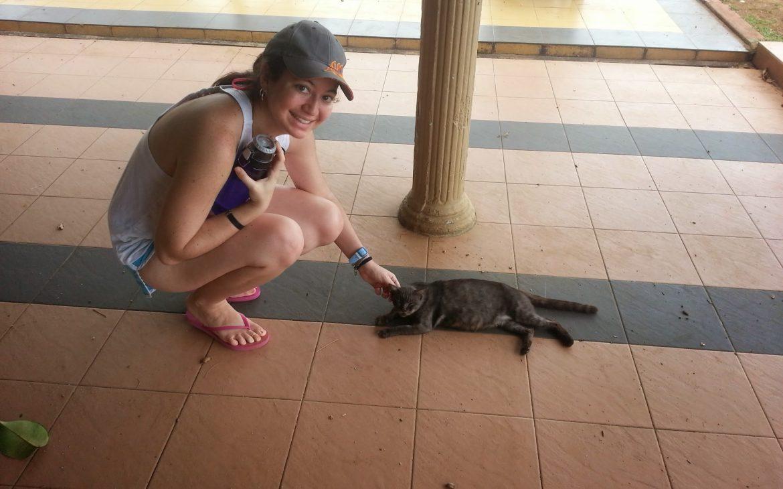 Cat on Kuantan Beach